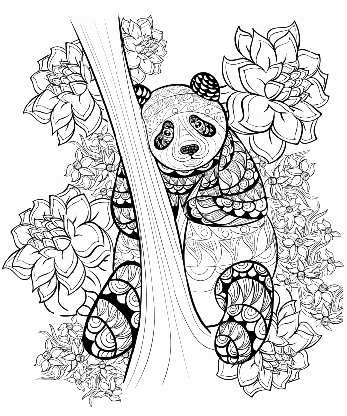 Ausmalbilder Mia and Me Einzigartig Best top 75 Free Printable Pokemon Coloring Pages Line Pinterest