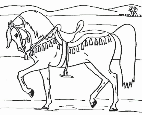 Ausmalbilder Mia and Me Frisch Coloring Pages Horseland Eskayalitim