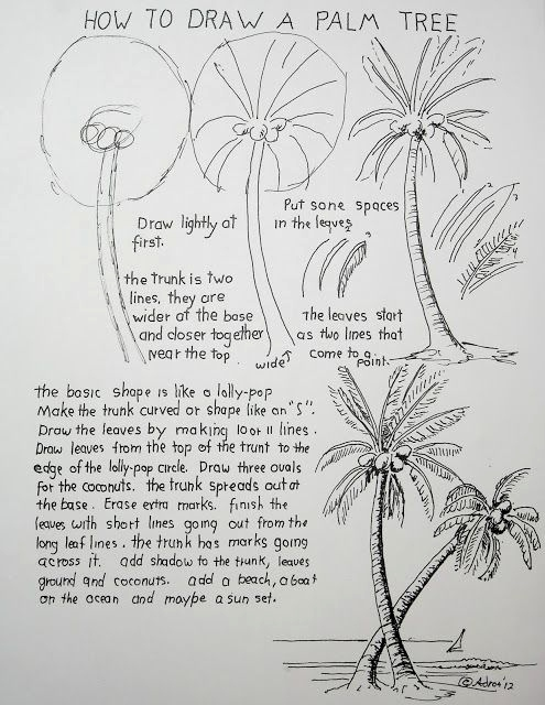 Blumen Malen Lernen Kostenlos Best How to Draw A Palm Tree Worksheet Dz Flora Pinterest