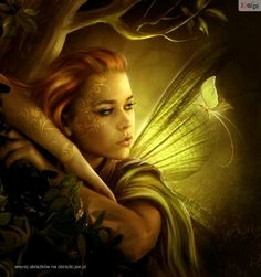 Elfen Bilder Gratis Genial 43 Best Elvish Images On Pinterest