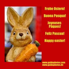 Teddy Gruskarten Best 10 Best Ostern Und Osterkarten Images On Pinterest