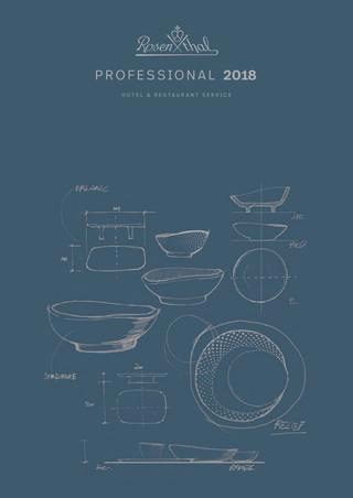 Bone China Porzellan Aldi Einzigartig Vajilla Rosenthal Catalogo General 2018 by Servitel issuu
